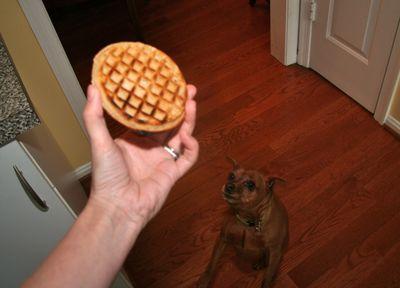 Ceiba-waffle5