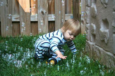 Bubbles-2010-10
