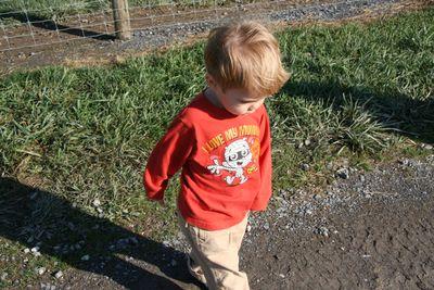 Green-meadows-farm-102810-08