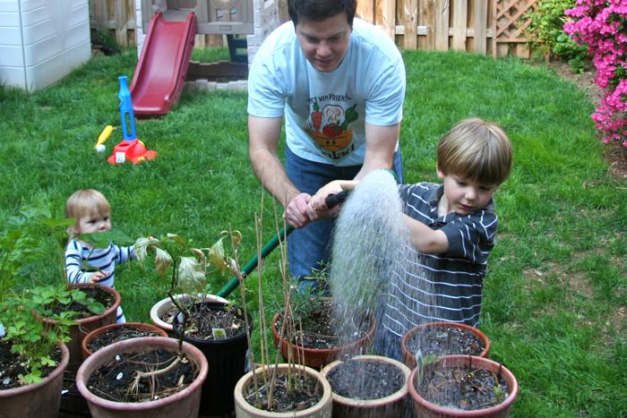 Bubbles-2010-12