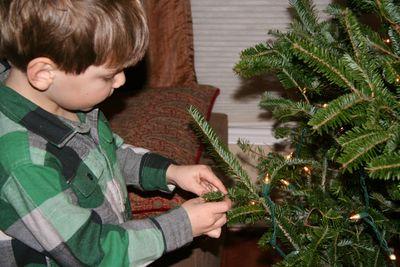 Christmas-tree-20102