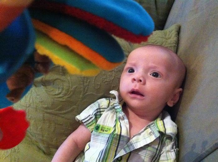 Baby-ike-firefly-10-weeks-05