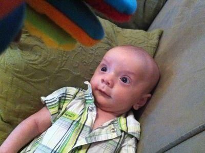 Baby-ike-firefly-10-weeks-15