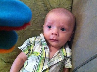Baby-ike-firefly-10-weeks-20