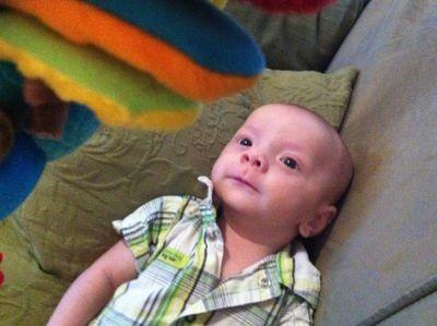 Baby-ike-firefly-10-weeks-14