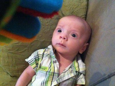 Baby-ike-firefly-10-weeks-19