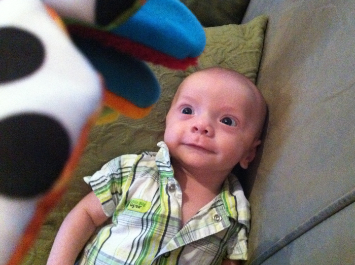 Baby-ike-firefly-10-weeks-24