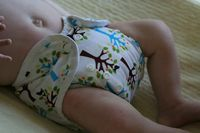 Cloth-diapers-02