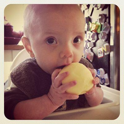 Ike-apple-six-months
