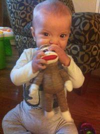 Ike-monkey