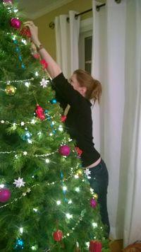 Amy tree